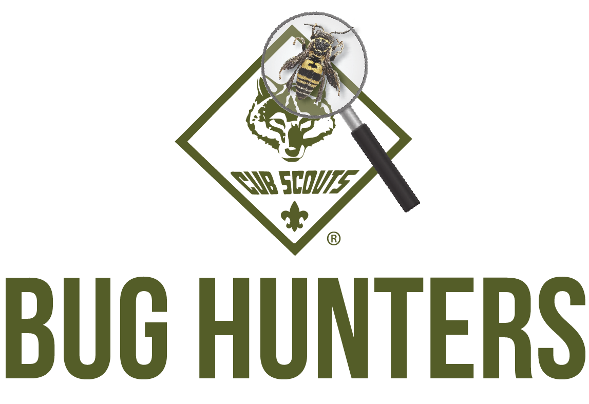 Image result for bug hunters cub scout theme